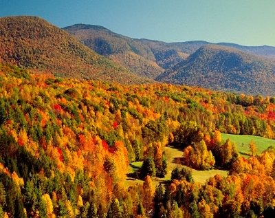 Autumn Berkshires1